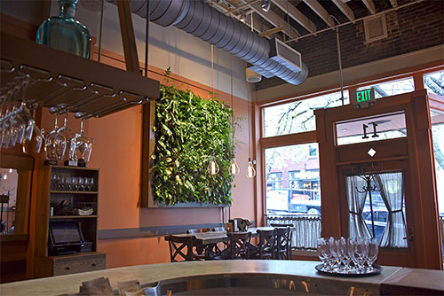 Living Wall - Living Roofs Inc - Curate - Asheville, NC - Commercial Living Roof
