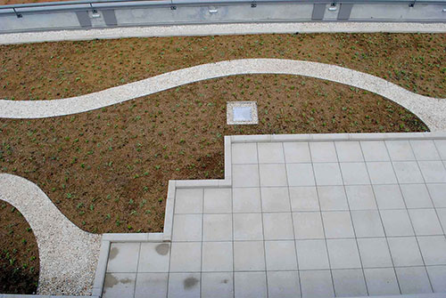 Green Roof Project - Living Roofs, Inc - Lyman, SC - Commercial Living Roof