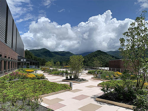 Green Roof Project - Living Roofs, Inc. - Apodaca Science Building - Western Carolina University - Cullowhee, NC