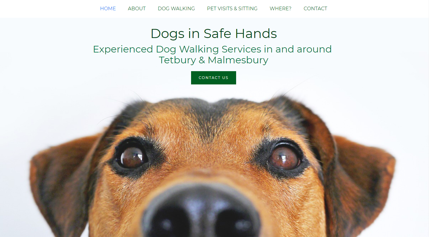 Allabout Sites - Dogs in Safe Hands