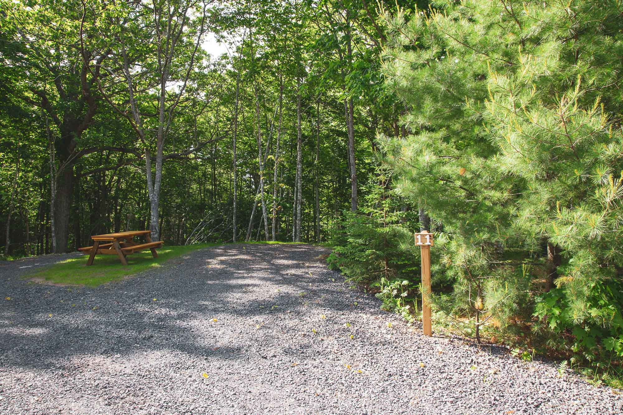 Photo of Campground Site 11 at the Wilderness Resort in Lac La Belle Michigan
