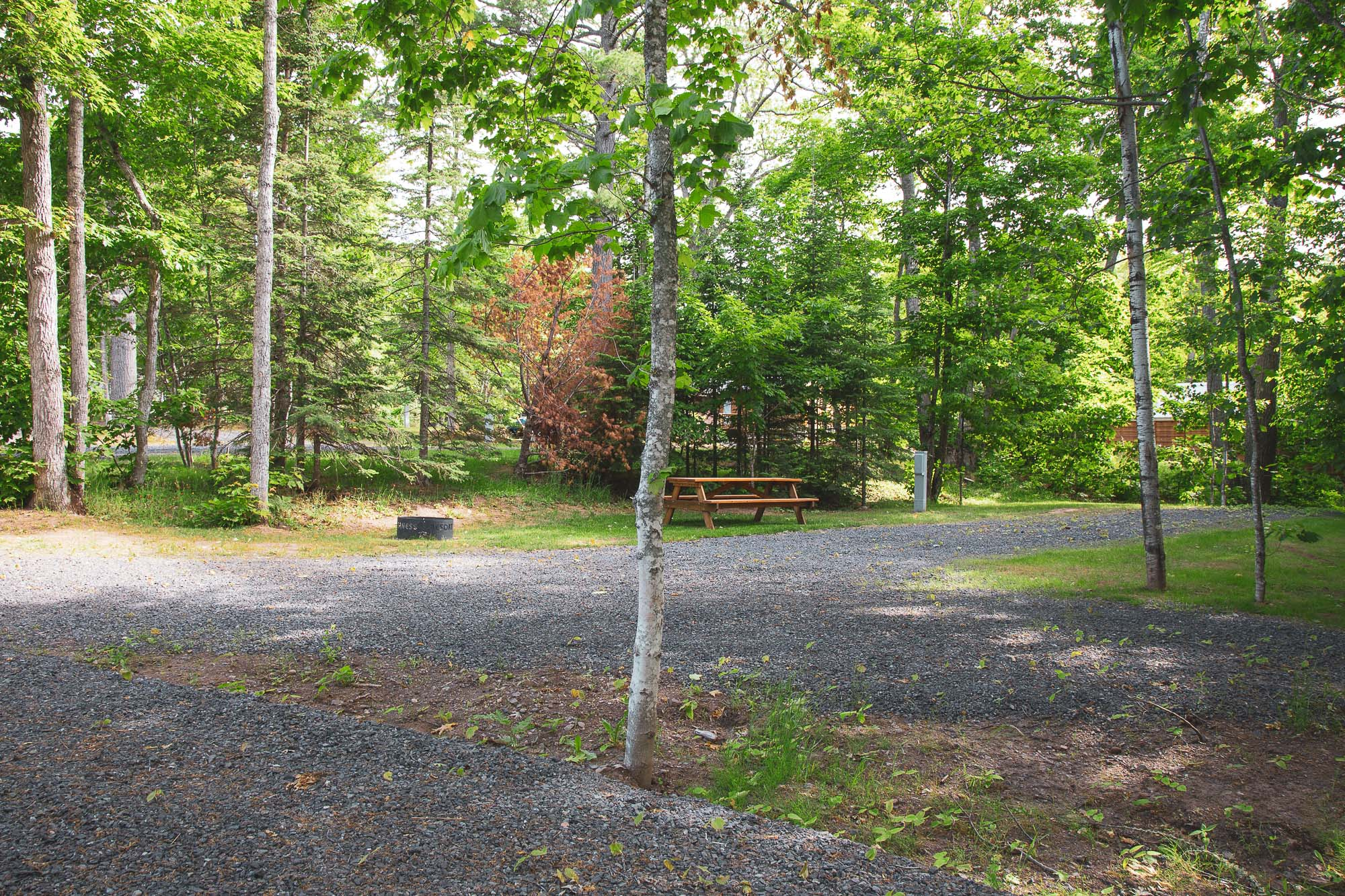 Photo of Campground Site 10  at the Wilderness Resort in Lac La Belle Michigan
