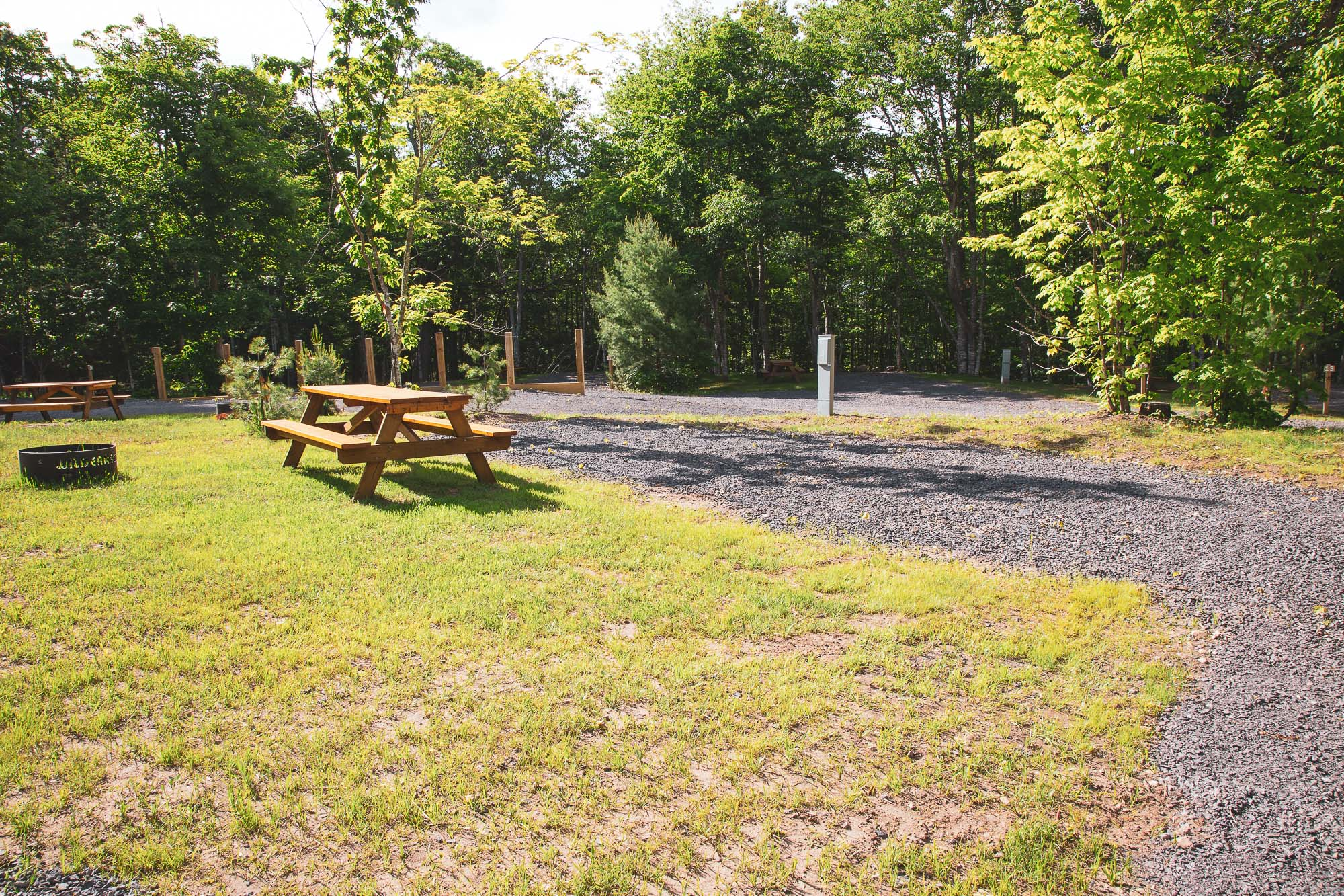 Photo of Campground Site 14 at the Wilderness Resort in Lac La Belle Michigan