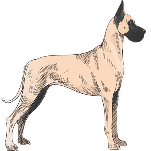 Example of Giant Dog
