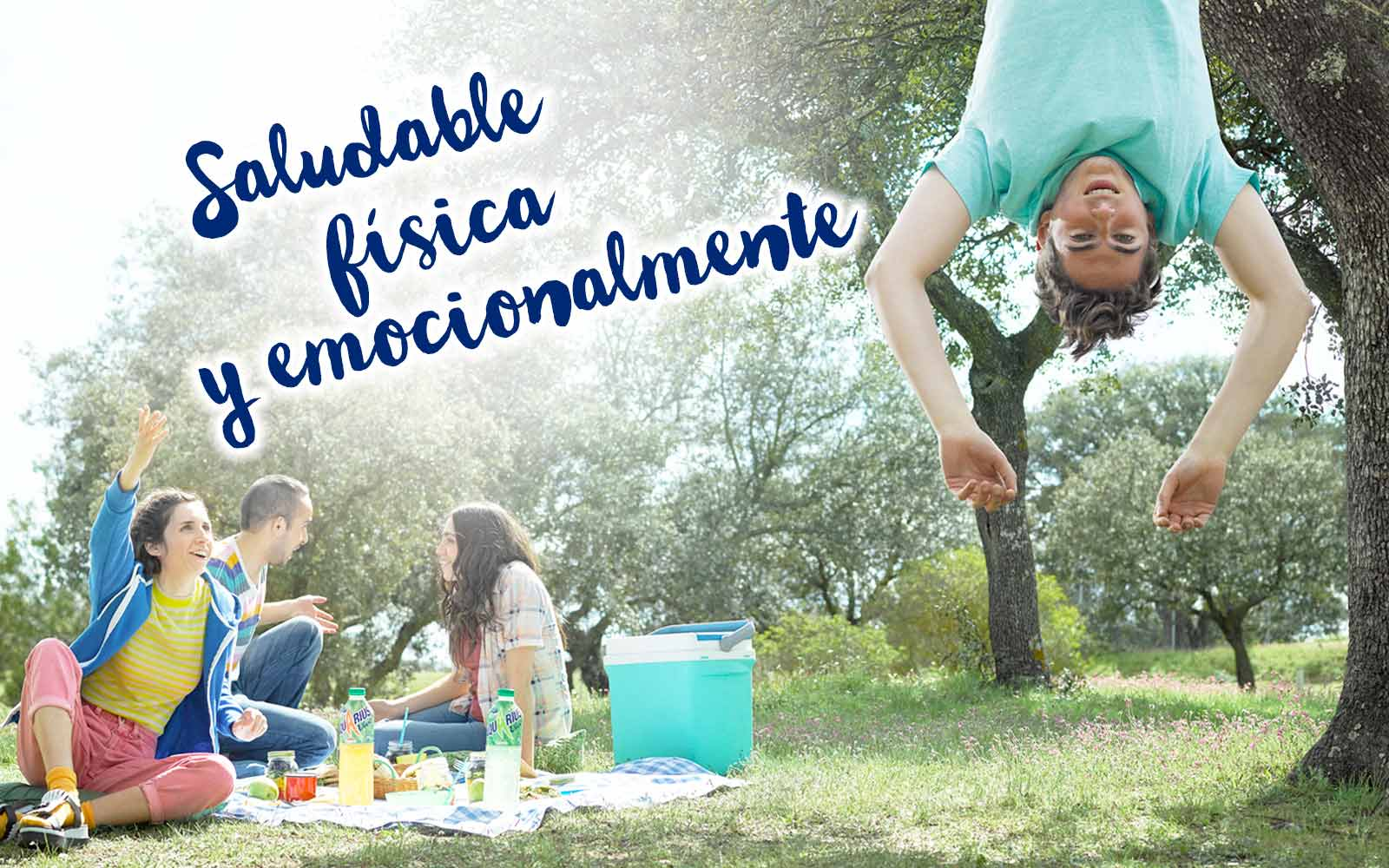 This image was used in the Aquarius Vive advertising campaign by The Coca-Cola Company. It features friends enjoying Aquarius Vive outside at a picnic and a man hanging upside down from a tree.