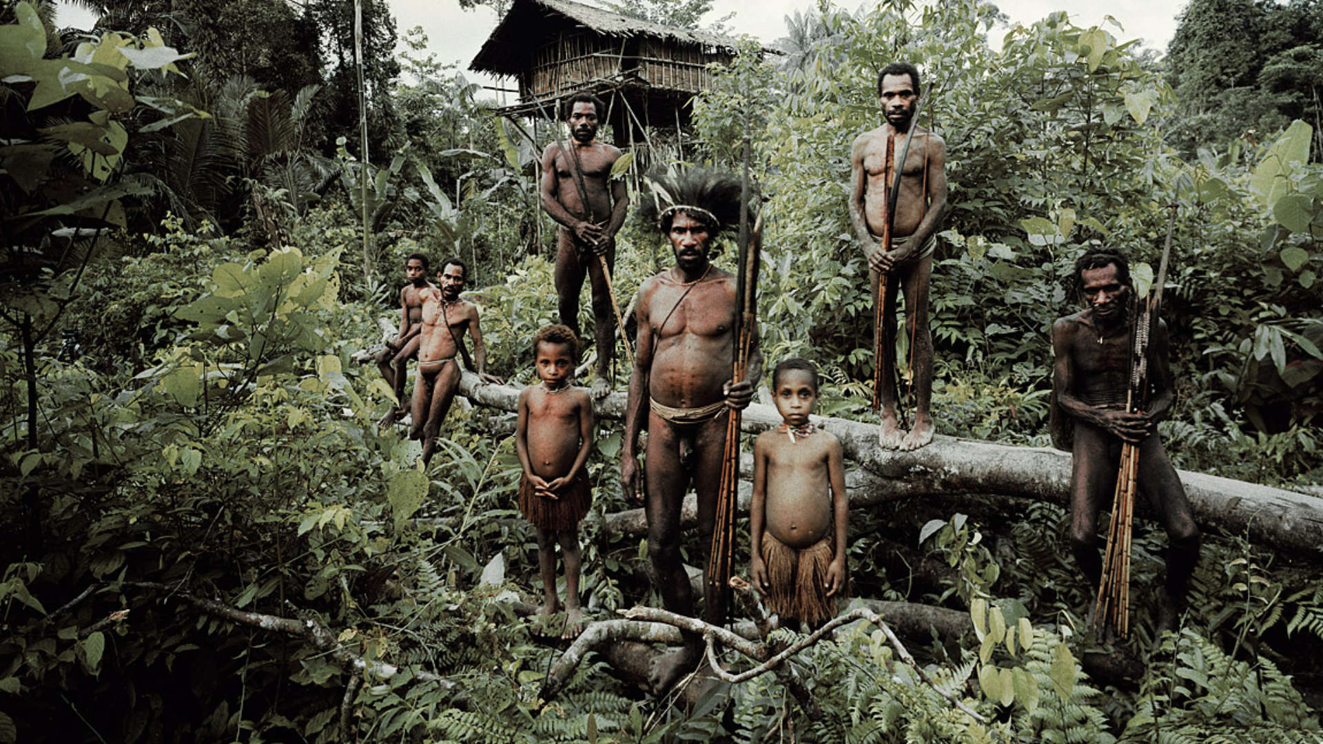 Korowai stam, Mabul, Papoea Indonesië