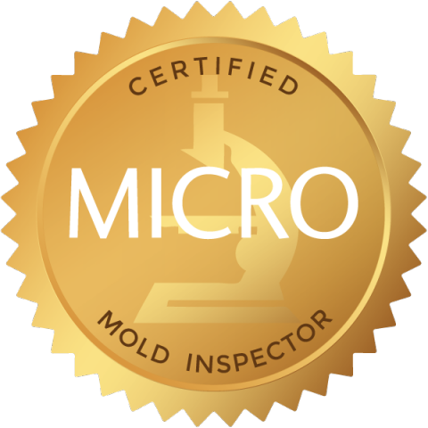 precision mold testing is mold testing certified my micro