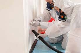 Asbestos testing in San Diego, CA