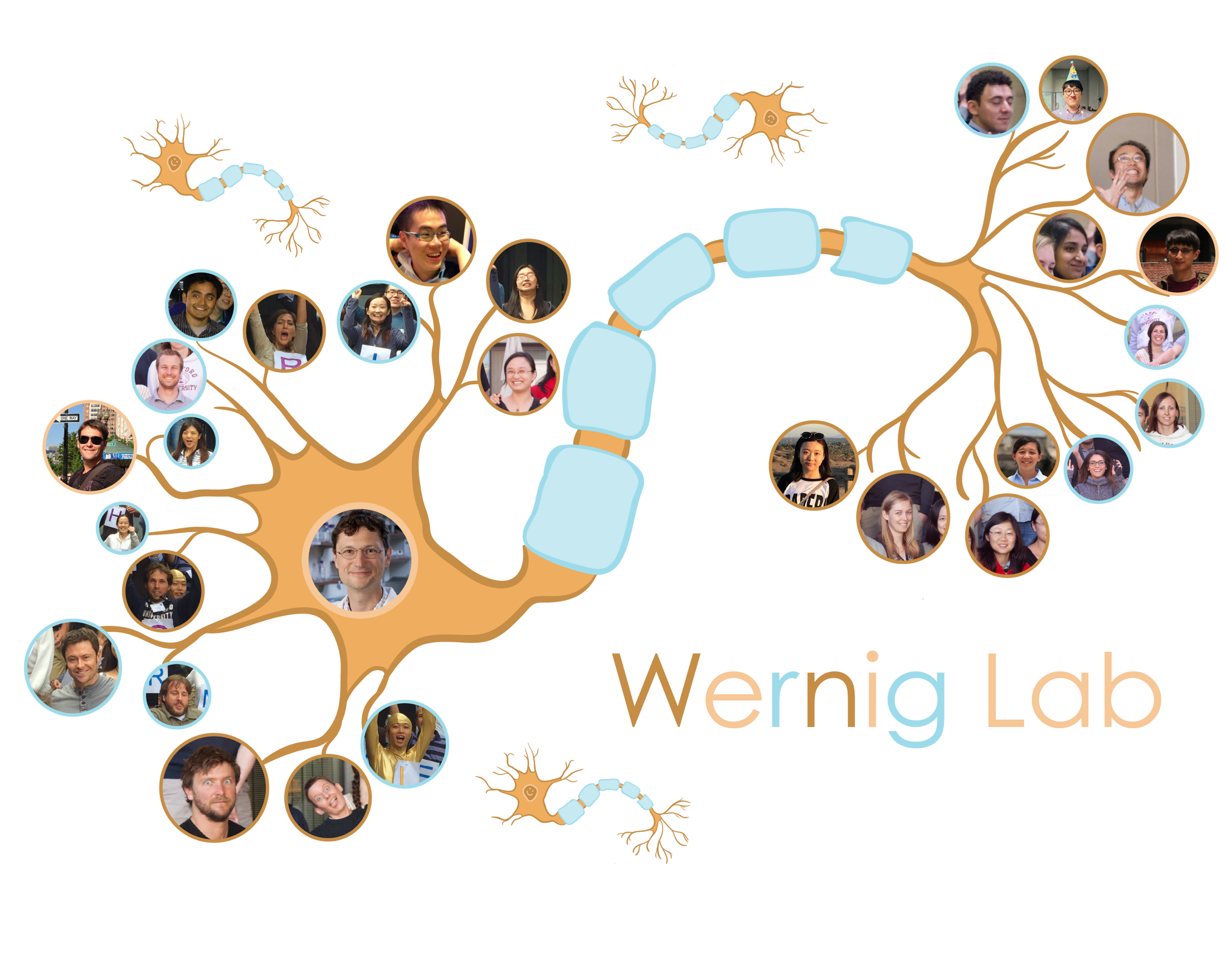Wernig Lab team graphic