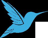 Fitchburg Springs Dental hummingbird logo