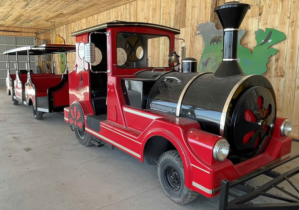 Safari North Train