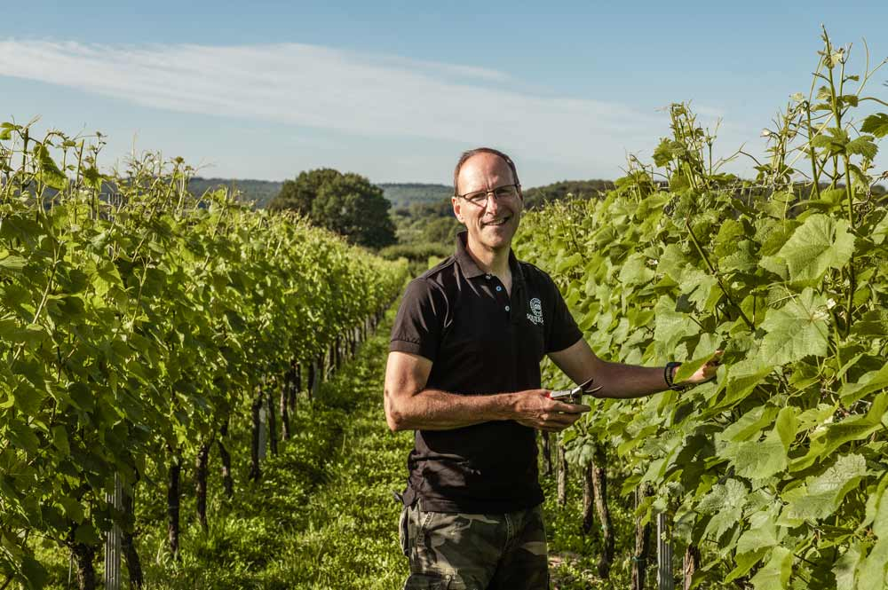 From the City to a Vocation in the Vineyard