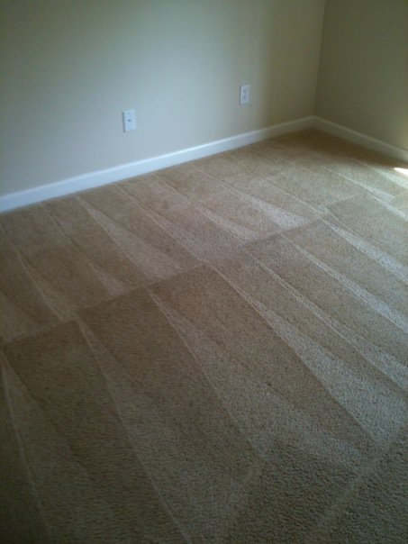 Carpet Cleaning More In Bellingham Wa Northwest