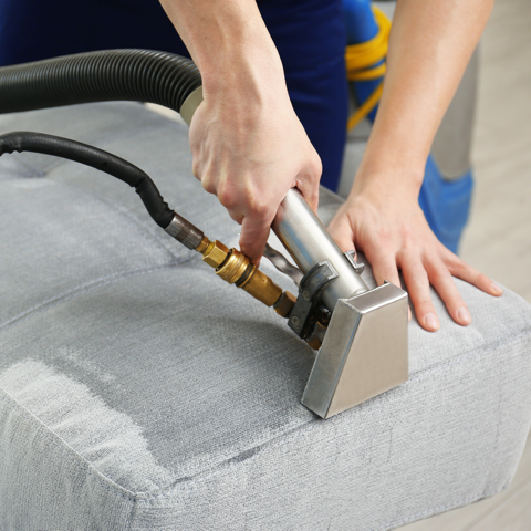 upholstery being cleaned in bellingham