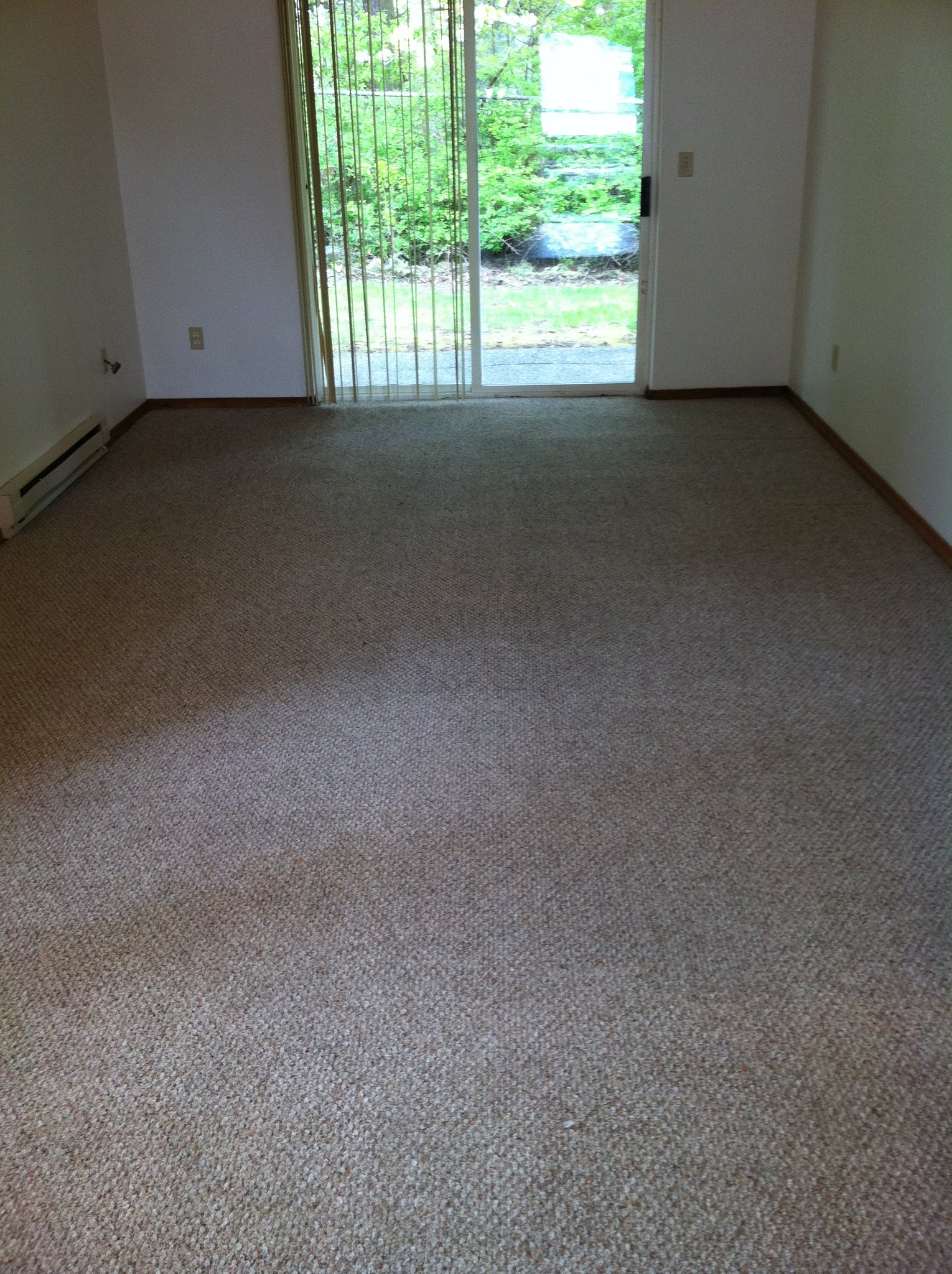 ... carpet cleaning project 3 ...