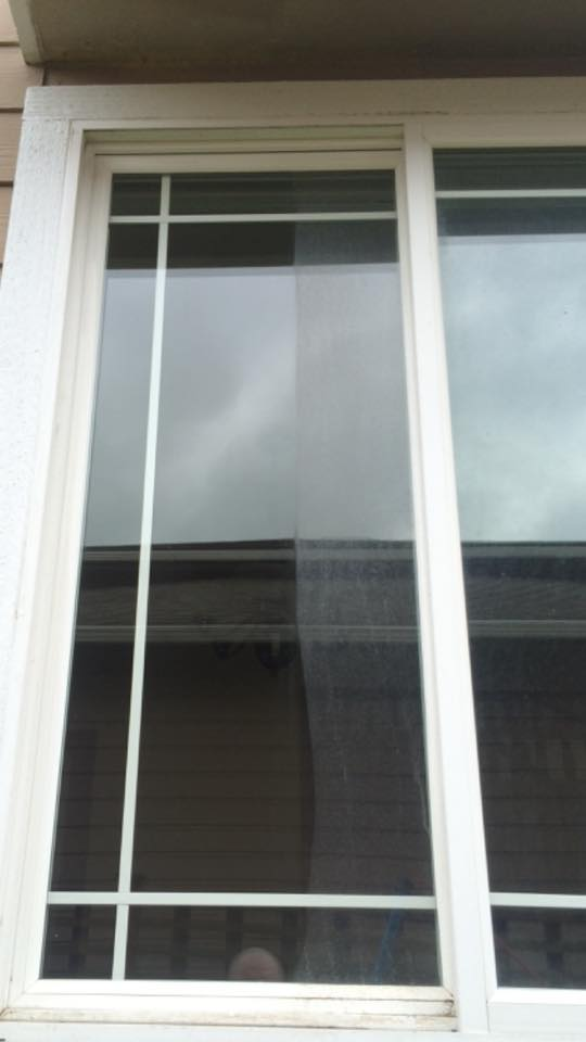 window cleaning project 3