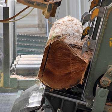 Mohawk Lumber Cutting in Applecreek Ohio