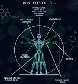 benefits of CBD with skeleton and molecule icons