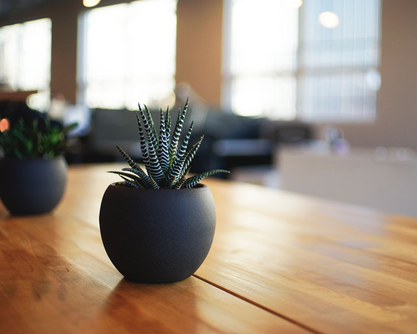 Small black plant pot on table