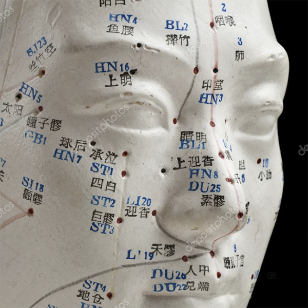 Acupuncture model of a face used in traditional Chinese medicine