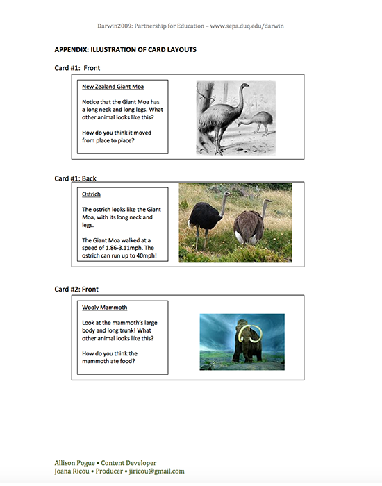 Fleshing Out Fossils Activity Guide