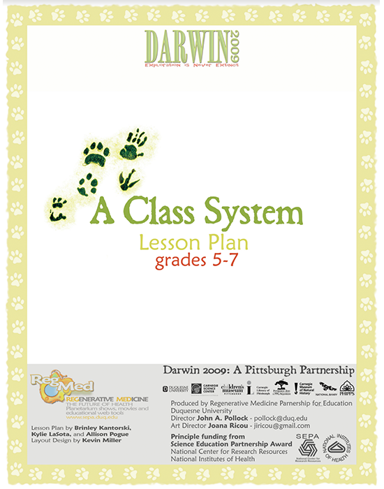 A Class System Lesson Plan