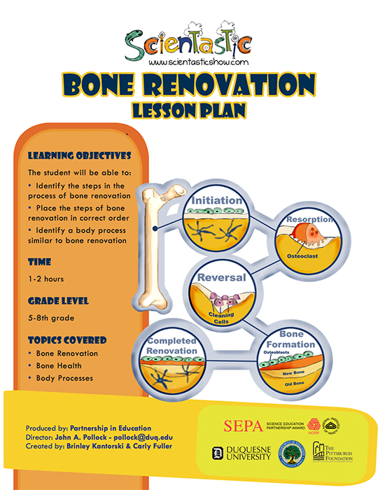 Scientastic Bone Renovation
