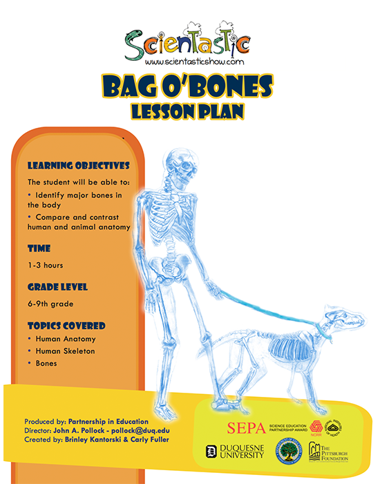 Scientastic Bag O' Bones