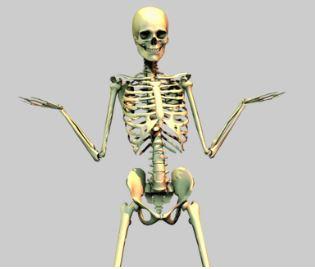 Bone QuizGame