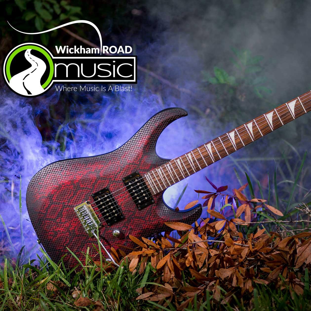 Cort Snake Skin Guitar
