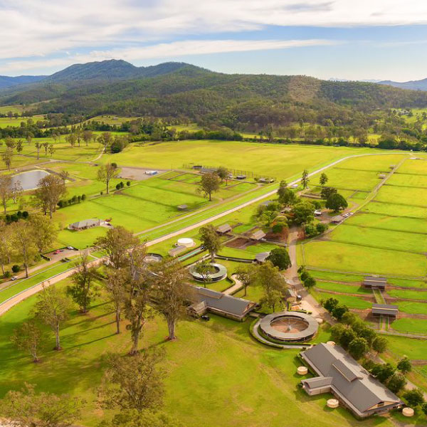 Aquis Farm - Canungra -