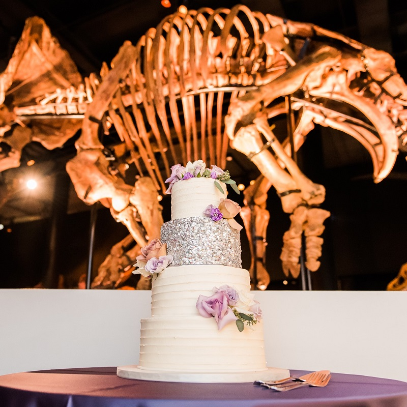 The couples wedding cake displayed in front of a dinosaur.