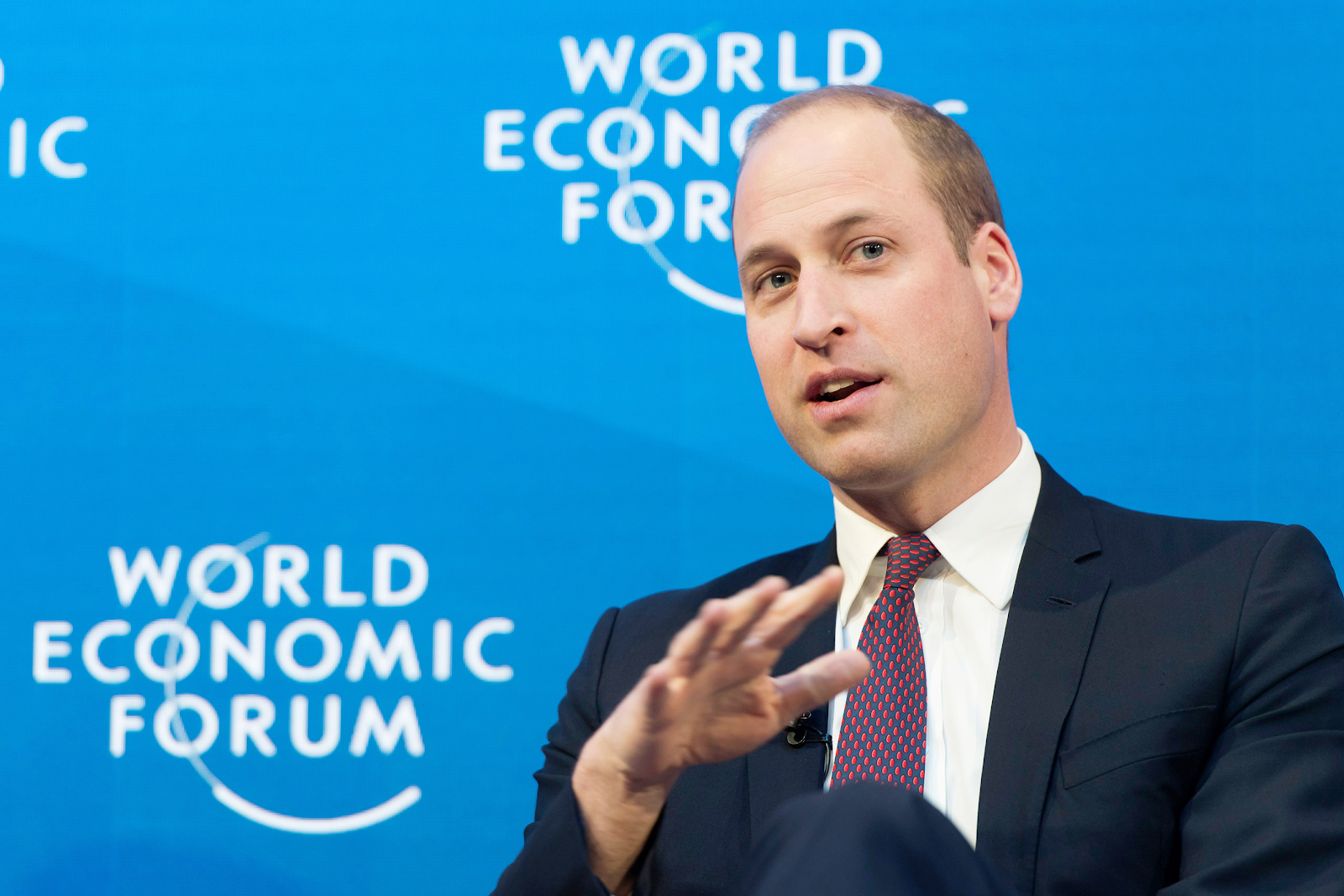 Prince William speaking at the World Economic Forum