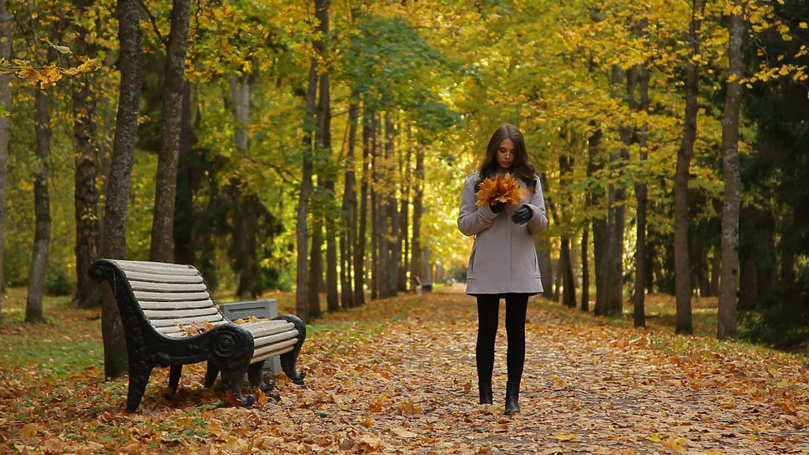 Woman walking through a park. Bench. Fall. Colorful leaves. Trees