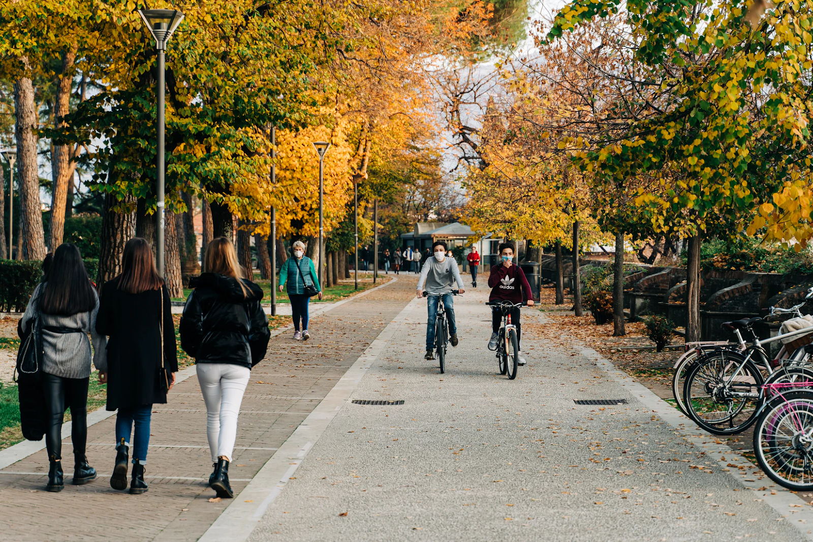 An image of several masked people walking and biking down a path in a park, with trees on either side.