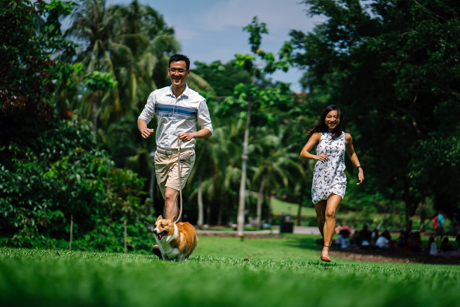 A man and woman running outdoors with their dog.