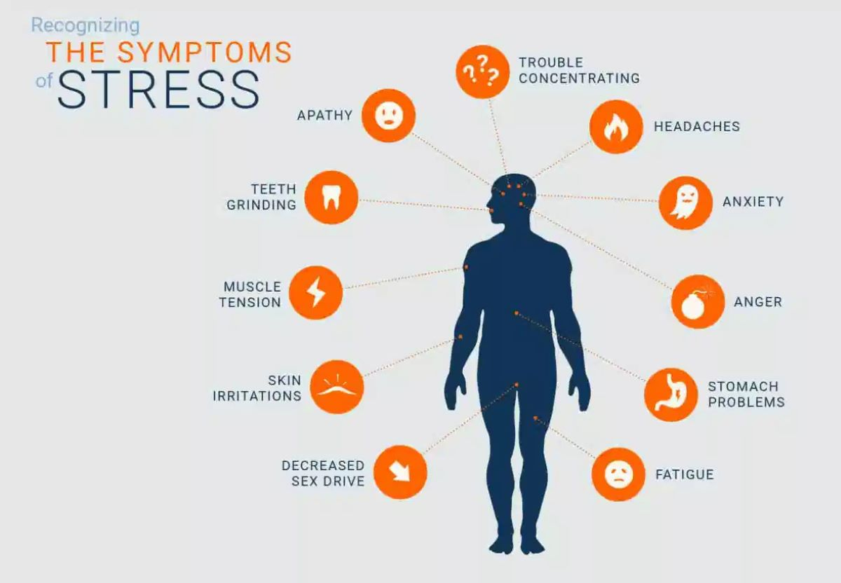 A graphic talking of the many symptoms of stress