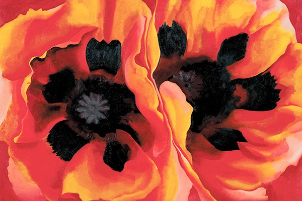 Painting of Georgia O'Keefe's Poppies.
