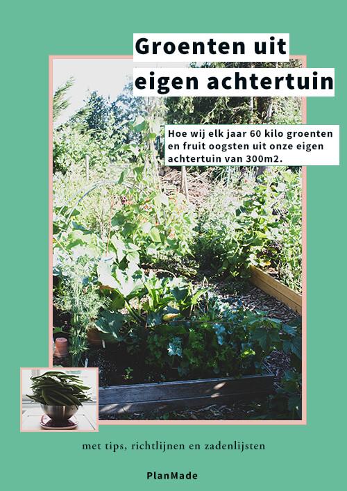 afbeelding van de cover van de 'groenten uit eigen tuin' gids. De cover heeft een groene achtergrond, een afbeelding van onze groenten tuin met verschillende planten in verhoogde bakken op een erg zonnige dag. De foto van de tuin heeft een lichtroze rand. In de rechter onder hoek van de cover staat er een foto van een hele stapel snijbonen in een metalen kom op een weegschaal. Alle text op de cover heeft een witte achtergrond. De text luidt 'groenten uit eigen achtertuin: hoe wij elk jaar 60 kilo groenten en fruit oogsten uit onze eigen achtertuin van 300m2.' Met ondertitel 'met tips, richtlijnen en zadenlijsten'