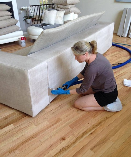 upholstery cleaning project by griffiths