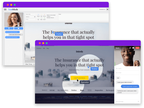 Co browsing dual cursor visual