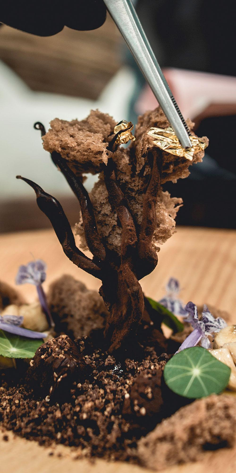 azulik-residence-gastronomy-2