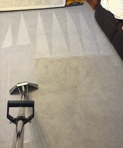 carpet cleaning in a myrtle beach home