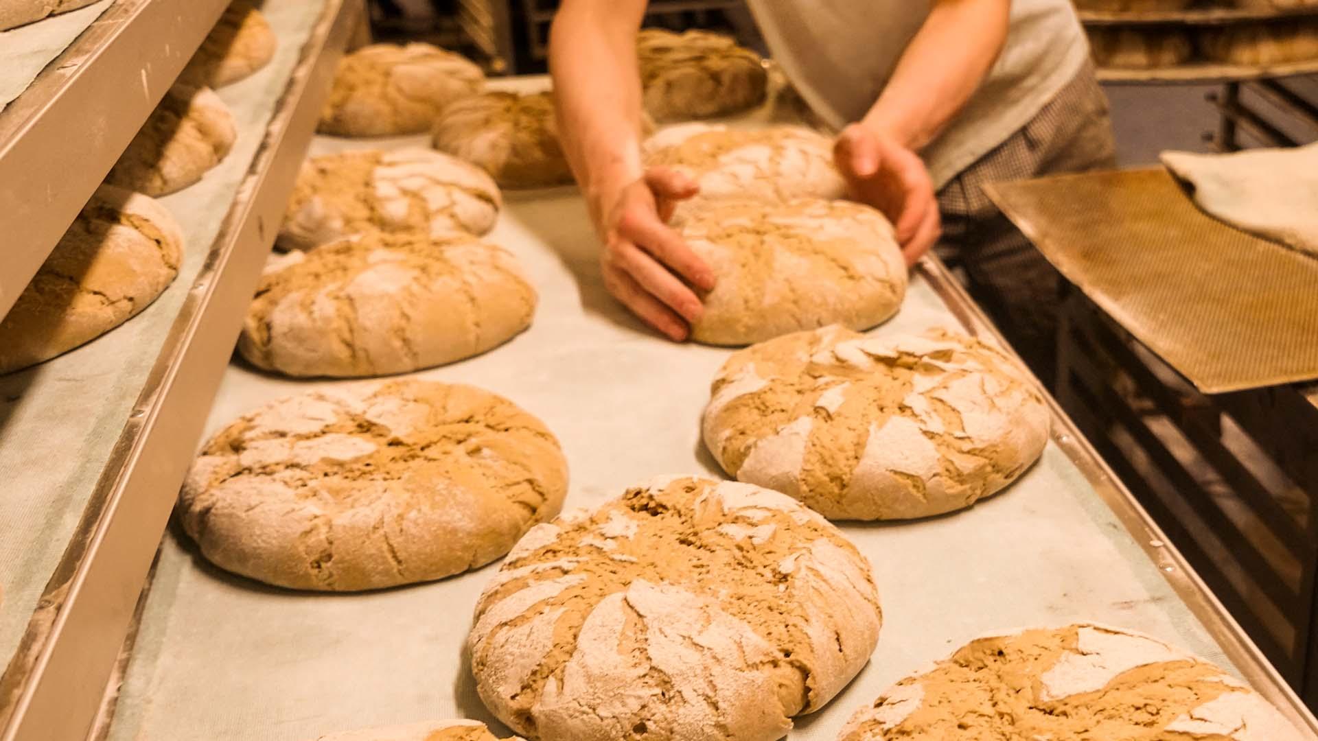 Landbäckerei Gagel Brote frisch gebacken