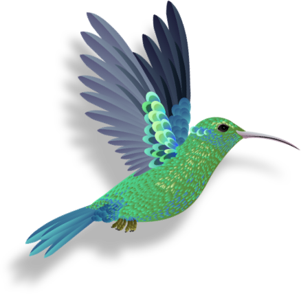 A blue and green hummingbird