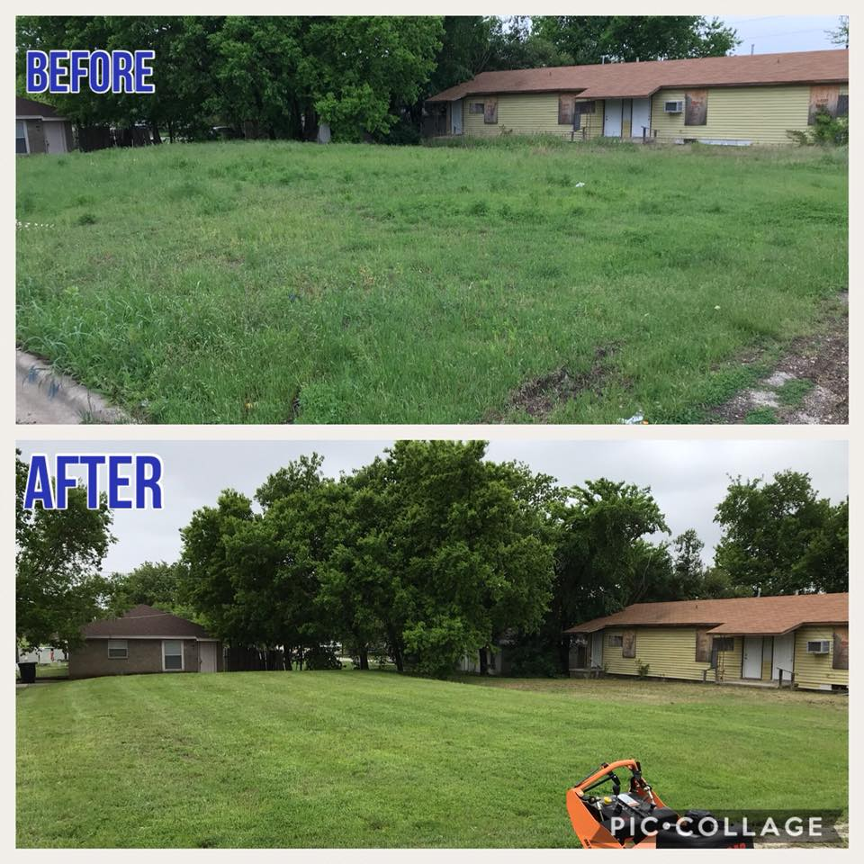 before and after lawn care maintenance