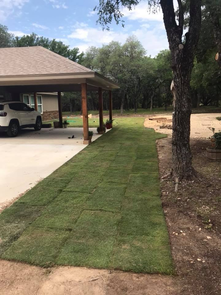 sod installation in a lampasas, tx home
