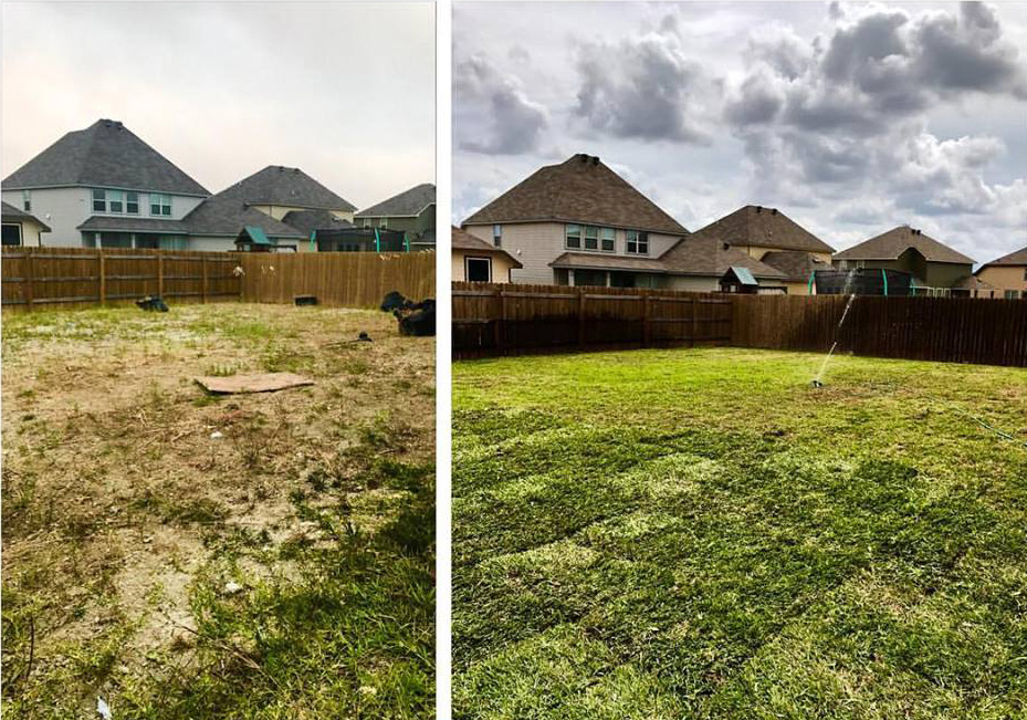 backyard lawn before and after photo