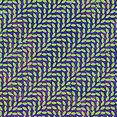 Animal Collective - Merriweather Post Pavilion album cover