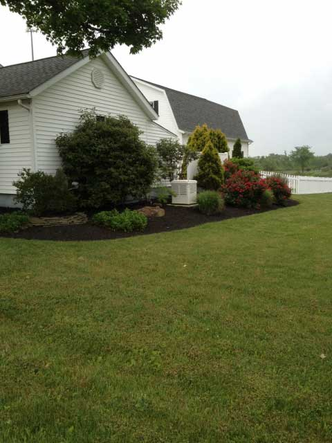 Generac Generator Installed in Cleveland OH